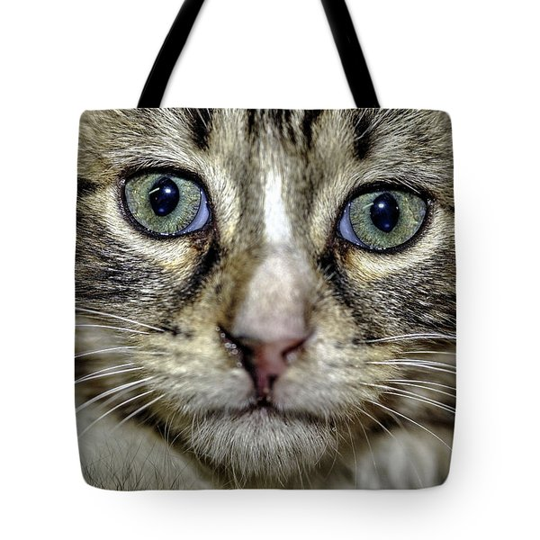 Cat 1 Tote Bag