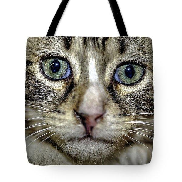 Cat 1 Tote Bag