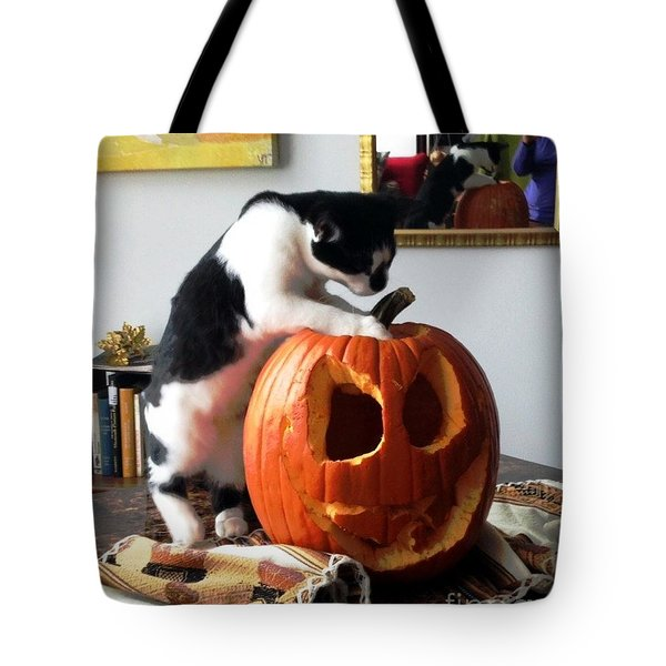 Tote Bag featuring the photograph Cat And Pumpkin by Vicky Tarcau