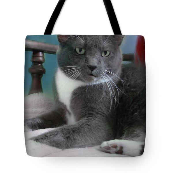 Cat Boticas Portrait  Tote Bag