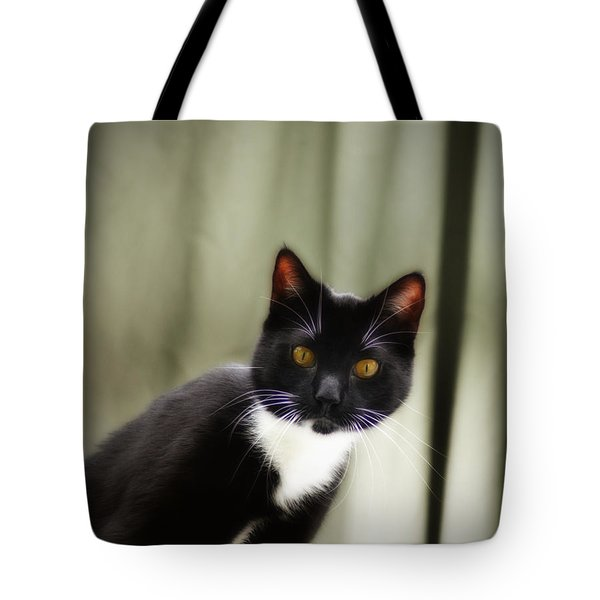 Cat Cat Tote Bag by Bill Cannon