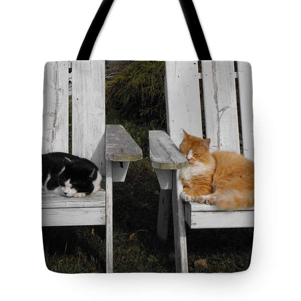 Cat Days Of Summer Tote Bag