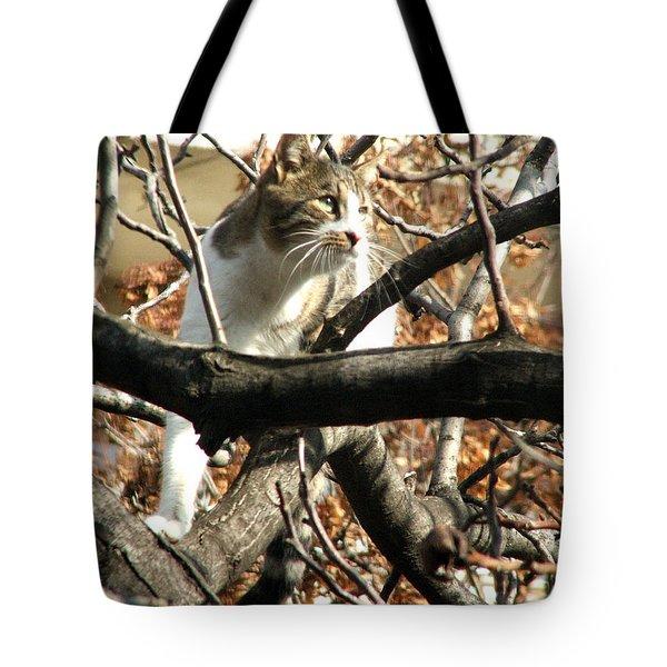 Cat Hunting Bird Tote Bag