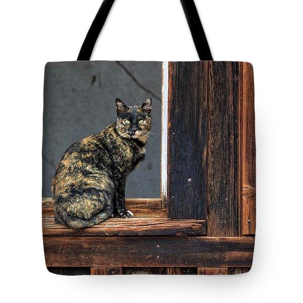 Cat In A Window Tote Bag