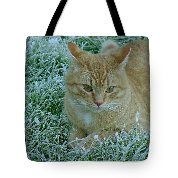 Cat In Frosty Grass Tote Bag by Shirley Heyn