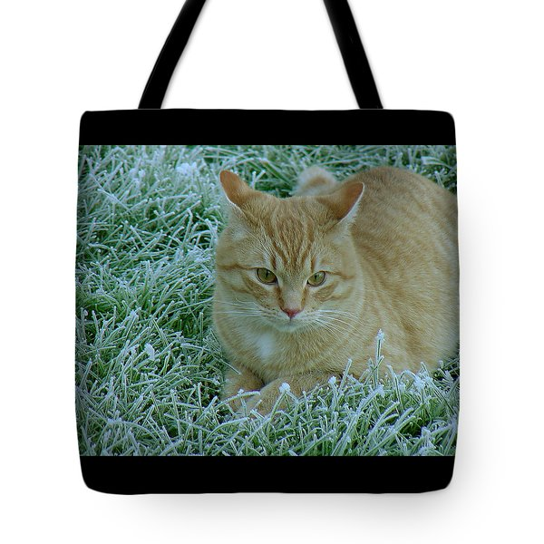 Cat In Frosty Grass Tote Bag