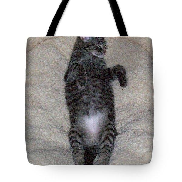 Cat In Repose Tote Bag