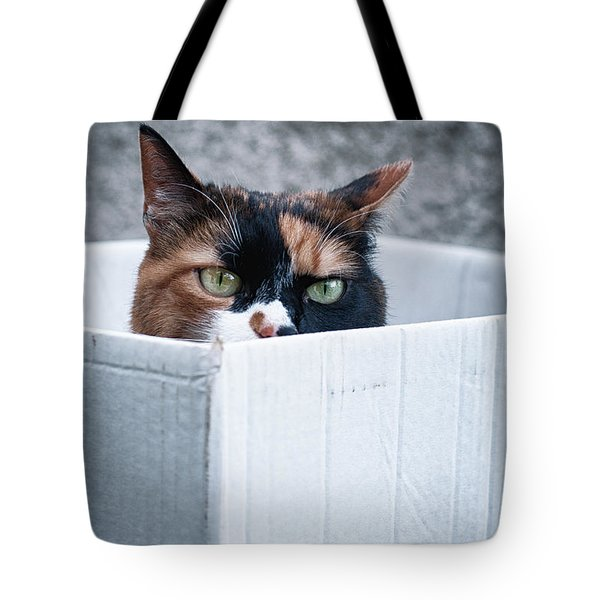 Tote Bag featuring the photograph Cat In The Box by Laura Melis