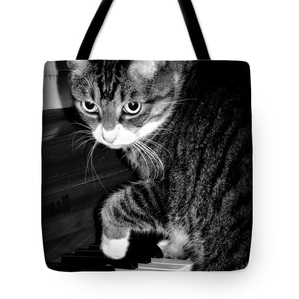 Cat Jammer Tote Bag