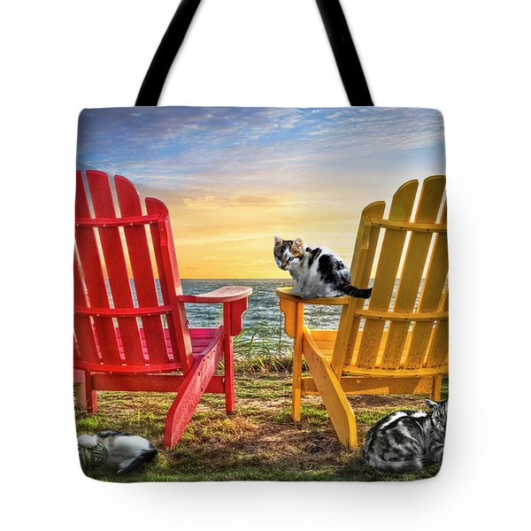 Tote Bag featuring the photograph Cat Nap At The Beach by Debra and Dave Vanderlaan
