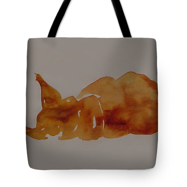 Cat Nap Tote Bag by Shirley Heyn