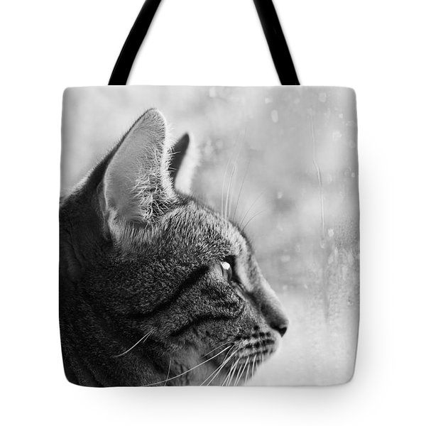 Tote Bag featuring the photograph November Rain by Helga Novelli