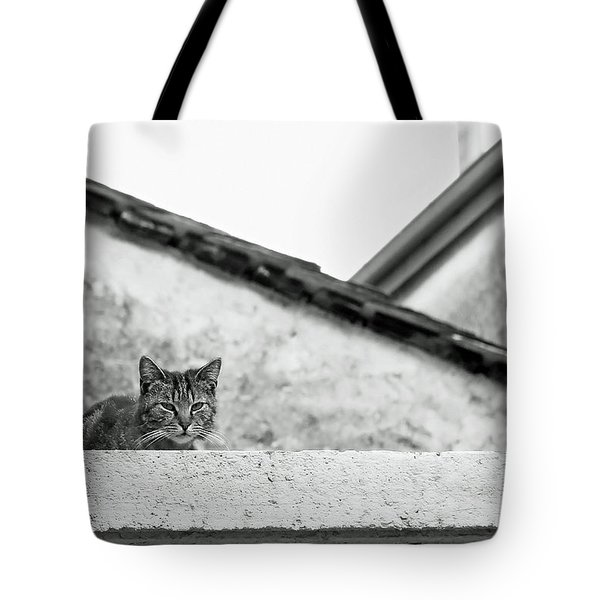 Cat On A Roof, Varenna Tote Bag by Brooke T Ryan