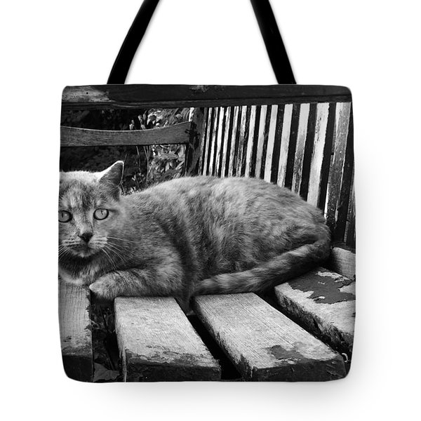 Cat On A Seat Tote Bag