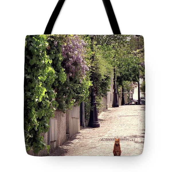 Cat On Cobblestone Tote Bag