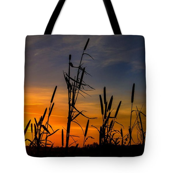 Cat Tails At Sunrise  Tote Bag by John Harding