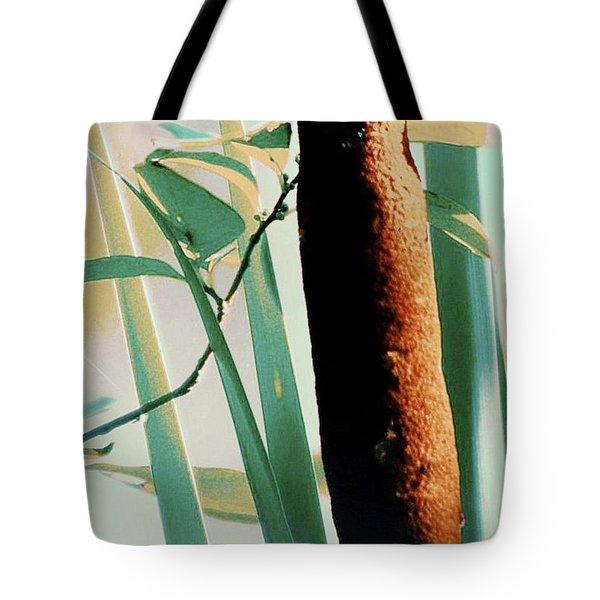 Cat Tales Tote Bag