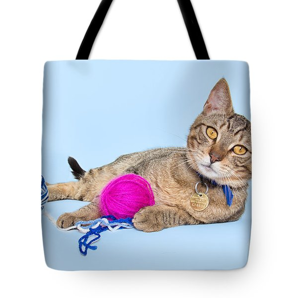 Cat With Golden Eyes Tote Bag