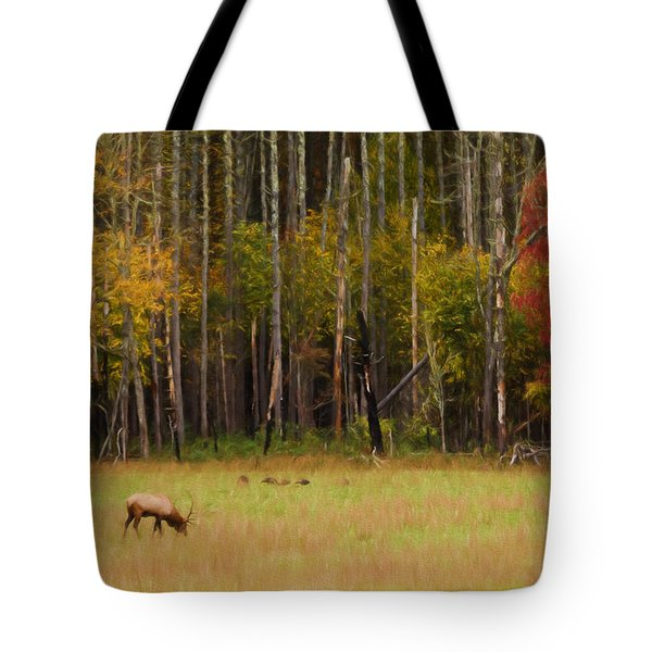 Cataloochee Valley Elk Tote Bag