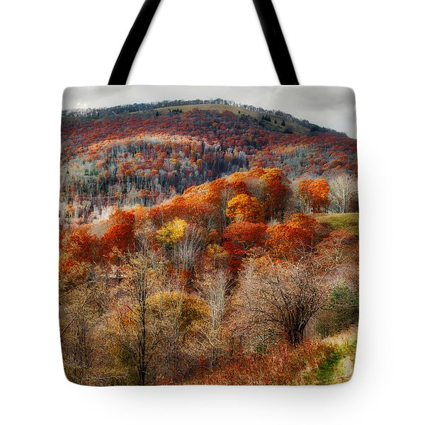 Tote Bag featuring the photograph Cataloochee Fall by Mark Guinn
