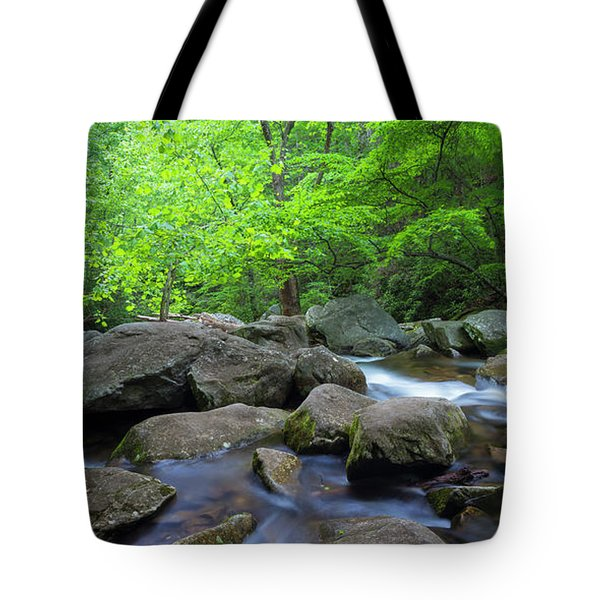 Tote Bag featuring the photograph Catawba Stream And Rocks Panorama by Ranjay Mitra
