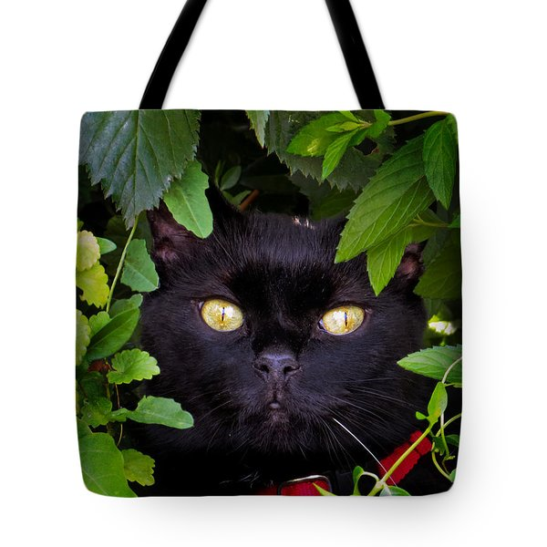 Catboo In The Wild Tote Bag by Shawna Rowe