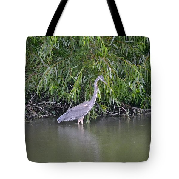 Tote Bag featuring the photograph Catch Me If You Can by Carol  Bradley