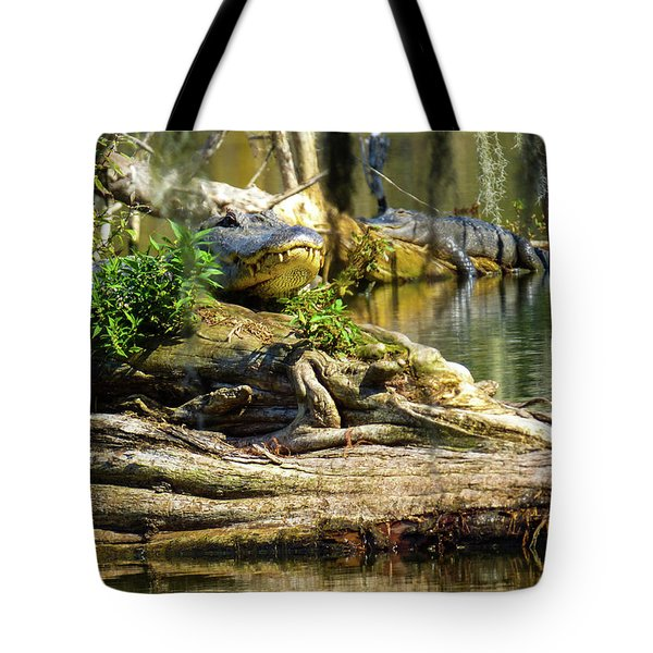 Catchin Some Rays Tote Bag by Kimo Fernandez