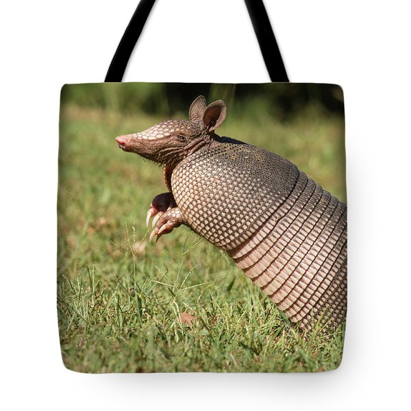 Catching A Scent Tote Bag