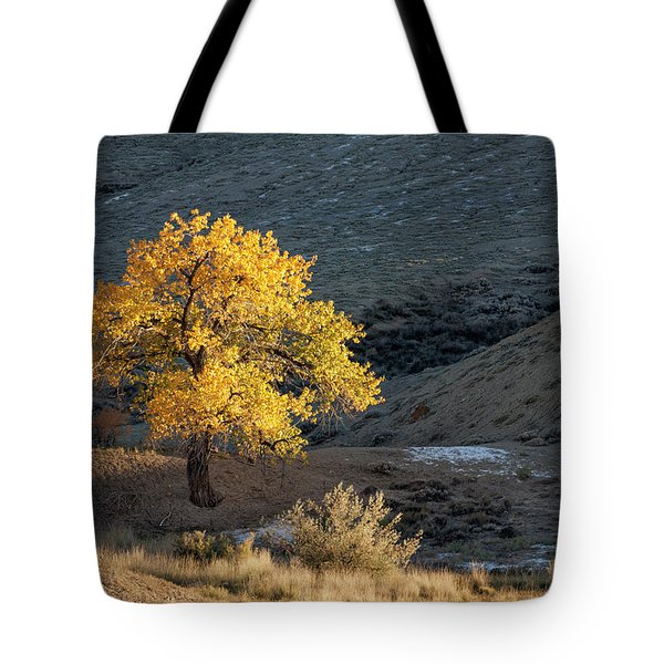 Catching Last Rays Tote Bag