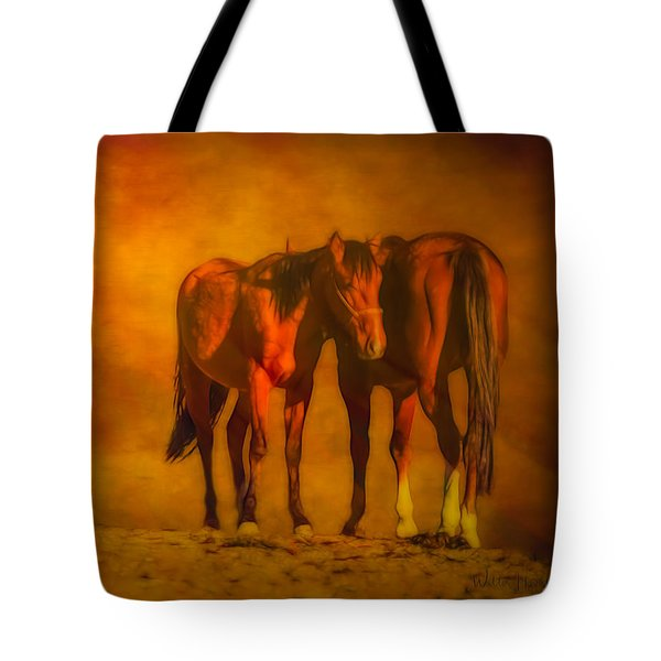 Catching The Last Sun Digital Painting Tote Bag