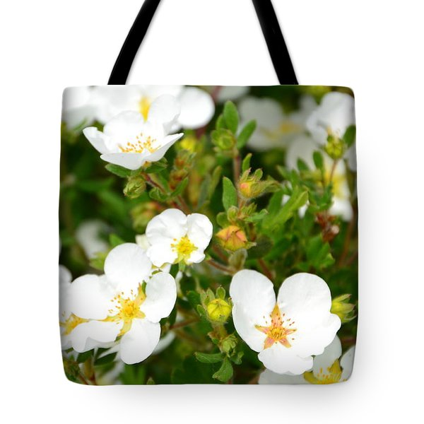 Catching The Sun Tote Bag