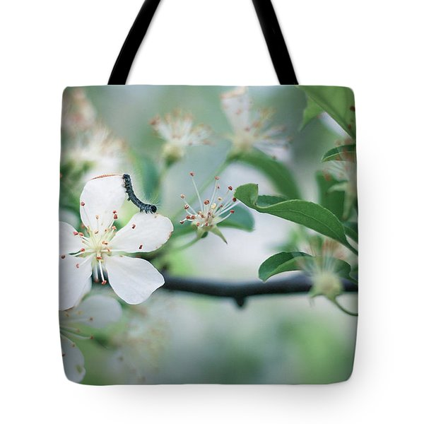 Caterpillar On A Tree Blossom Tote Bag