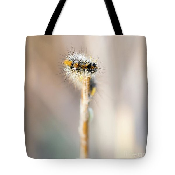 Caterpillar On The Stick Tote Bag