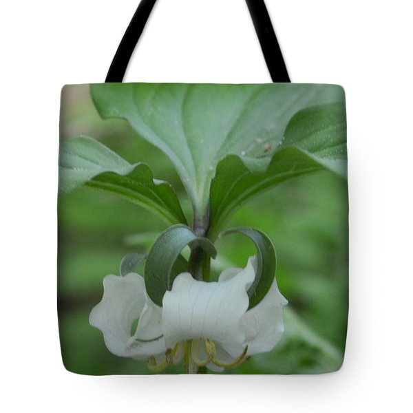 Tote Bag featuring the photograph Catesby Trillium by Linda Geiger