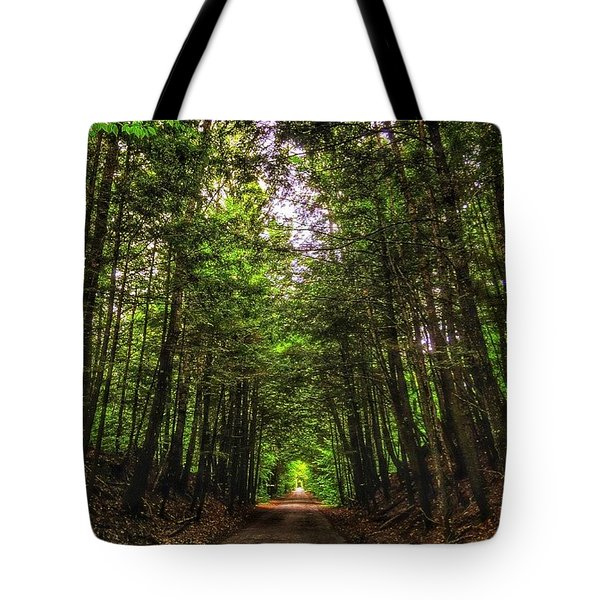 Cathedral Forests Tote Bag by Nick Heap