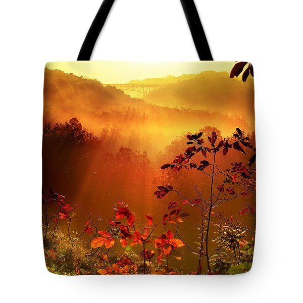 Cathedral Of Light - Special Crop Tote Bag