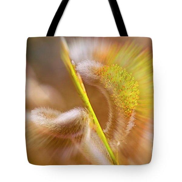 Catkins Bloom 2 Tote Bag