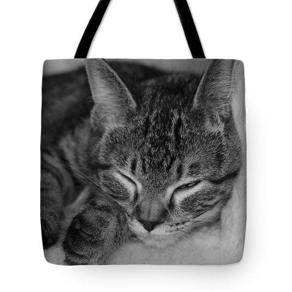 Catnap Tote Bag