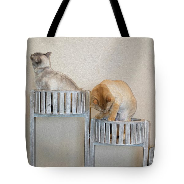 Cats In Baskets Tote Bag
