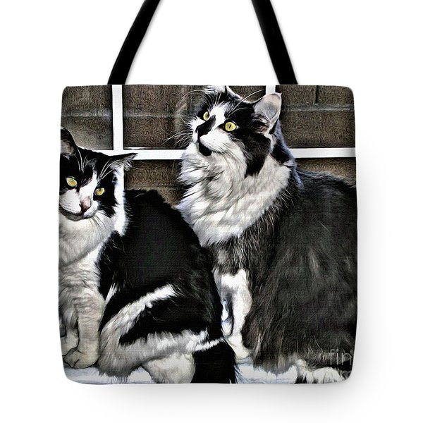 Tote Bag featuring the photograph Cats In The Window by Beauty For God