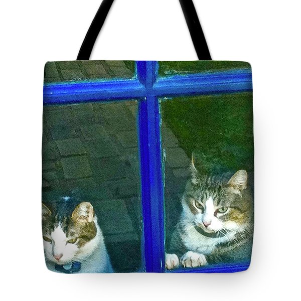 Cats On Baylor Street Tote Bag