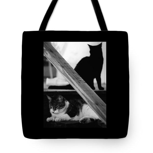 Cats Pose For Money And Fame Tote Bag