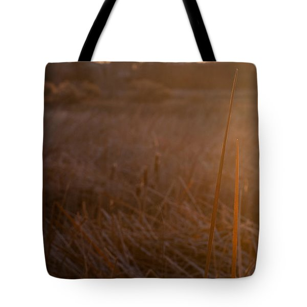 Tote Bag featuring the photograph Cattail At Sunrise by Monte Stevens