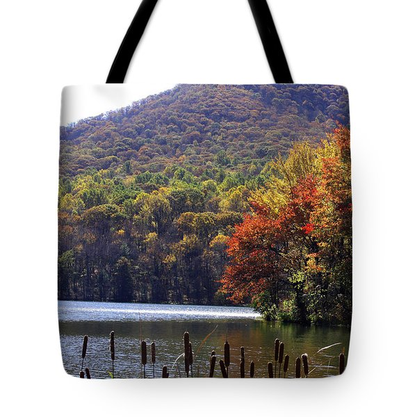 Cattails By Lake With Sharp Top In Background Tote Bag
