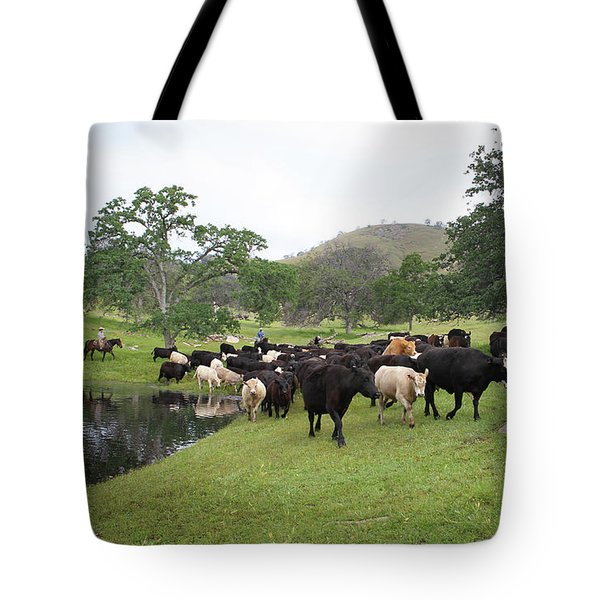 Cattle Tote Bag by Diane Bohna