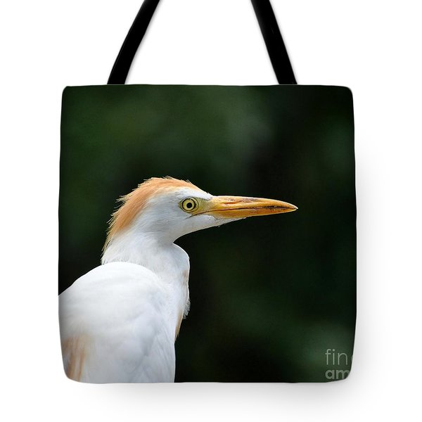 Cattle Egret Close-up Tote Bag by Al Powell Photography USA