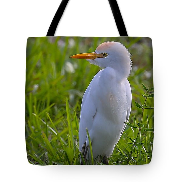 Cattle Egret Tote Bag