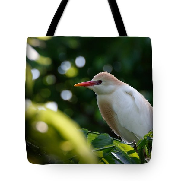 Cattle Egret In Oklahoma Tote Bag