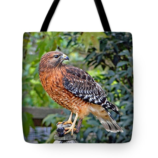 Tote Bag featuring the photograph Caught In The Talons by Sue Melvin